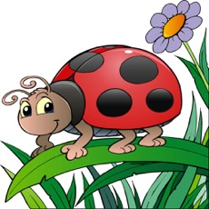 Activities of Mini Beast Insect Spotter- Spyglass