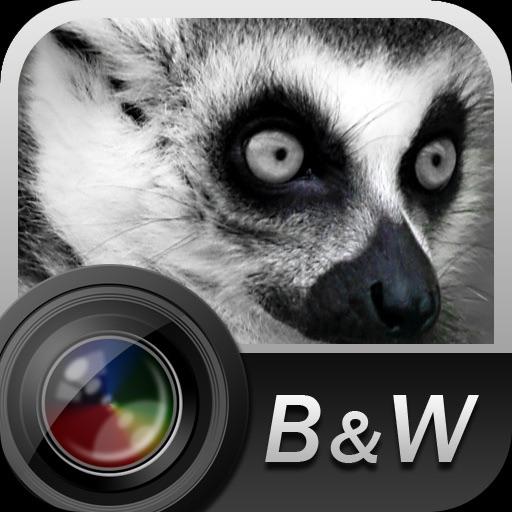 Aisu B&W Camera iOS App