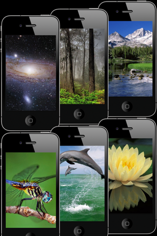 HD Wallpapers & Backgrounds for iPhone/iPod touch Pro Screenshot 3