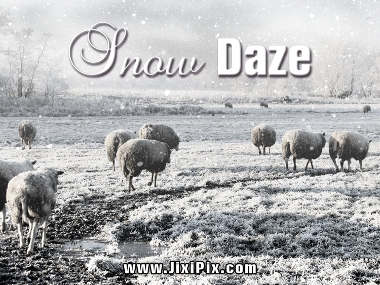 Snow Daze HD