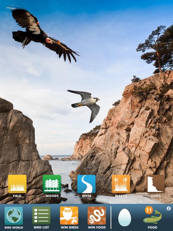 My Birds of Prey HD screenshot-3