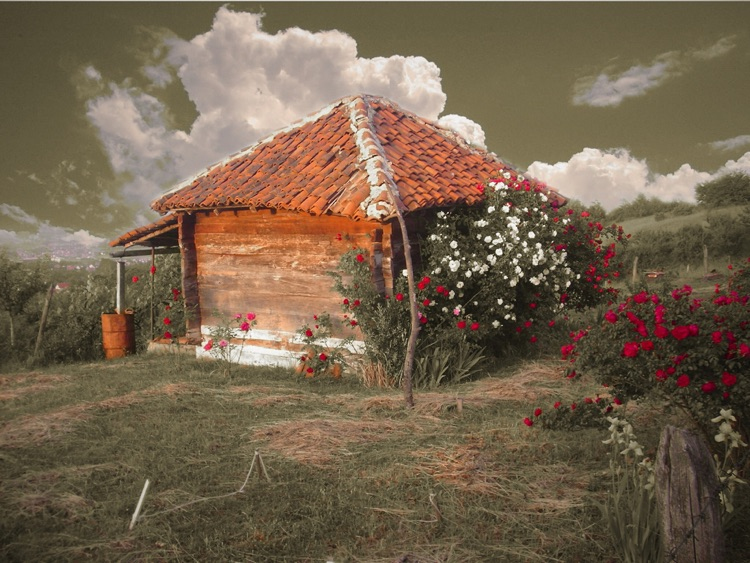 Romantic Photo HD