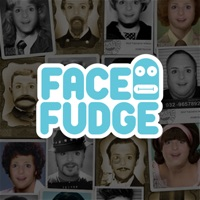 Codes for FaceFudge Hack