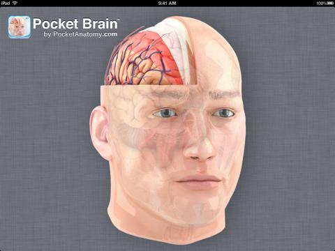 Pocket Brain-インタラクティブ神経解剖学のおすすめ画像1