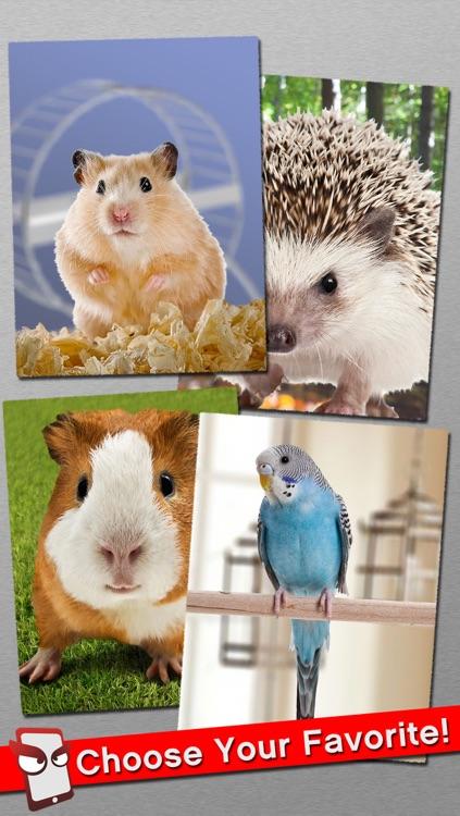 AngryPet Free - The Angry Pet Animal Simulator screenshot-3