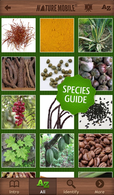 Exotic Spices and Stimulants - NATURE MOBILE