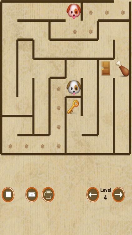 Dog Maze Race