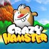 Crazy Hamster Free - iPhoneアプリ