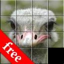 SlideIt Free