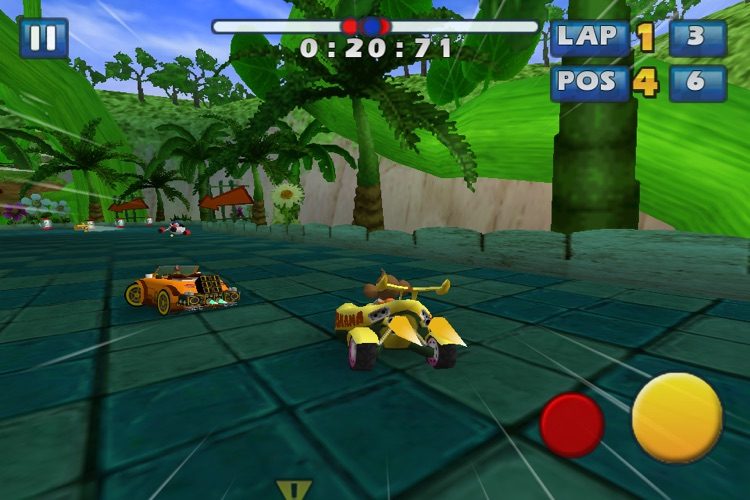 Sonic & SEGA All-Stars Racing screenshot-3