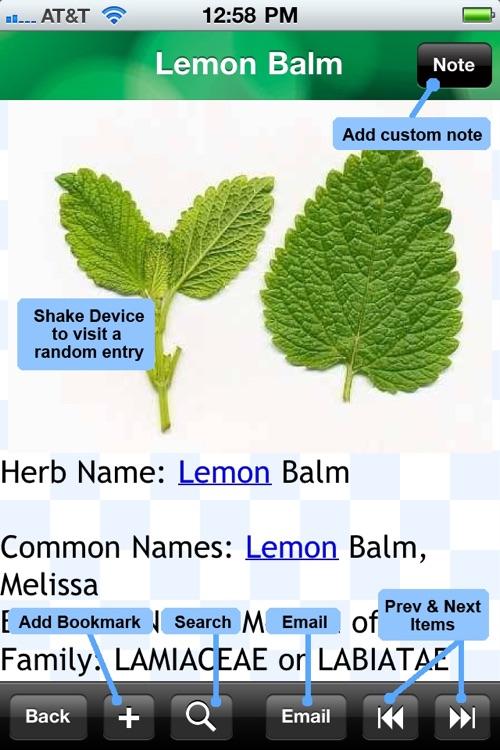 Medicinal Herbs Encyclopedia screenshot-4