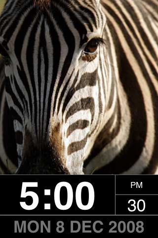 PhotoFrame: Wild! screenshot-3