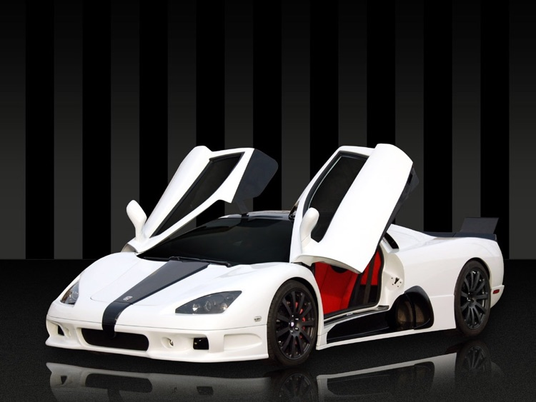 Top 10 Fastest Cars in the World screenshot-2