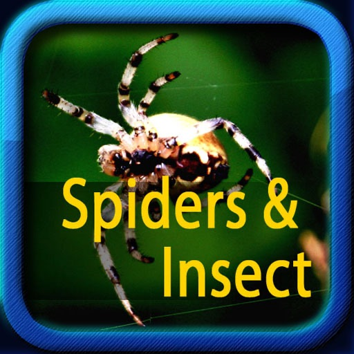 Spiders and Insects icon