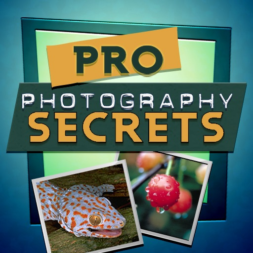 Pro Photography Secrets