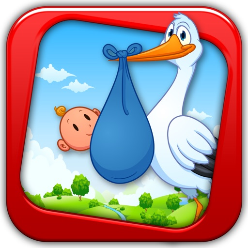 Deliver the Baby to the Doctor by the Stork Bird - fun game