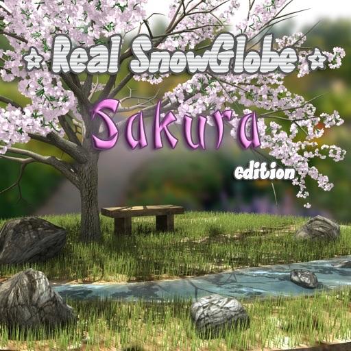 Real SnowGlobe Sakura Cherry blossom