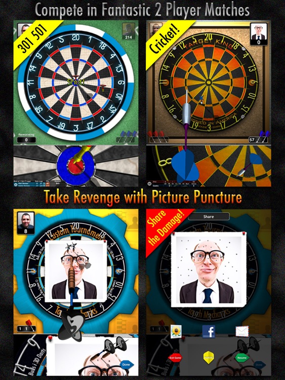 Bulls i 3D Darts HD screenshot-4