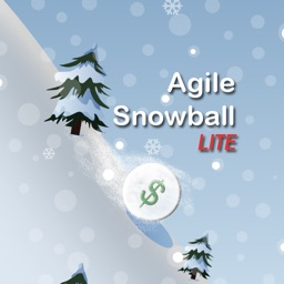 Agile Snowball Lite: Debt Simplified Redux