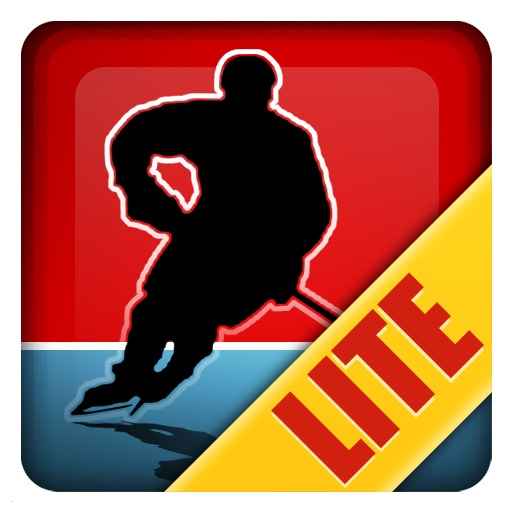 Magnetic Sports Hockey Lite