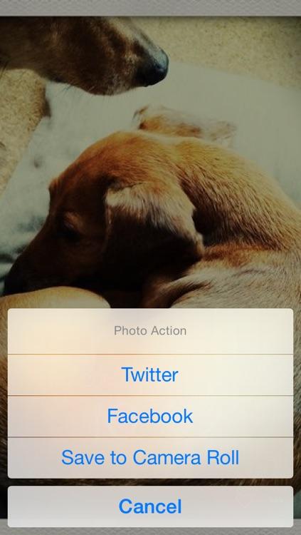 dog clock - clock for dog lovers - screenshot-4