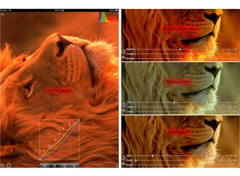 LightPhoto - Photo editor (Crop and Straighten,Rotate and Flip,Adjust color balance,Adjust color and tonality with Curves,Displaying image histogram information immediately,Unlimited Undo Steps,Add multiple custom borders,Add multiple custom watermarks) Screenshot