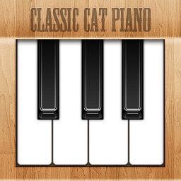 Cat Piano Free HD