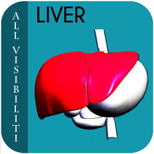 All Visibiliti Liver