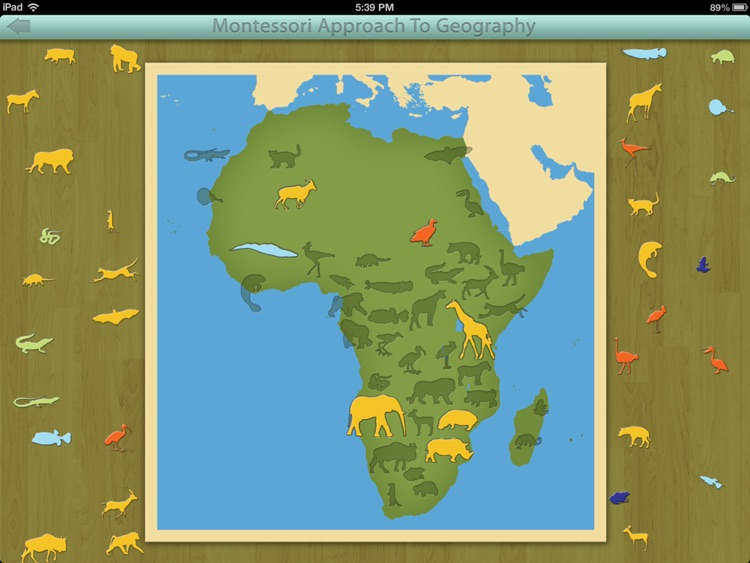Animals of Africa LITE - A Montessori Approach To Geography screenshot-4