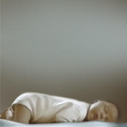 Baby Sleep Care Pro
