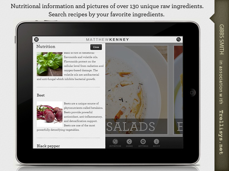 Matthew Kenney's Raw Express : Delicious and healthy raw food in thirty minutes or less. screenshot-3