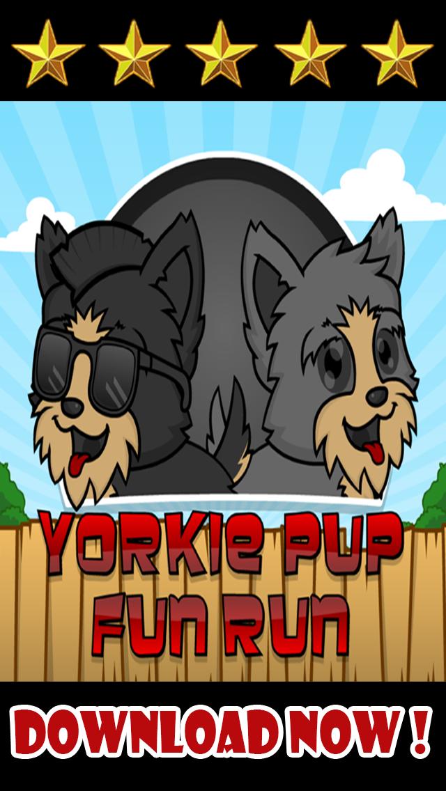 Yorkie Pup Fun Run screenshot three