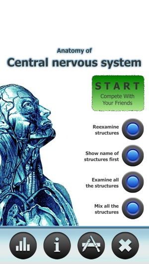 Anatomy Star - CNS (the Brain) on the App Store