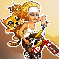 Codes for Sidekick Cycle Hack