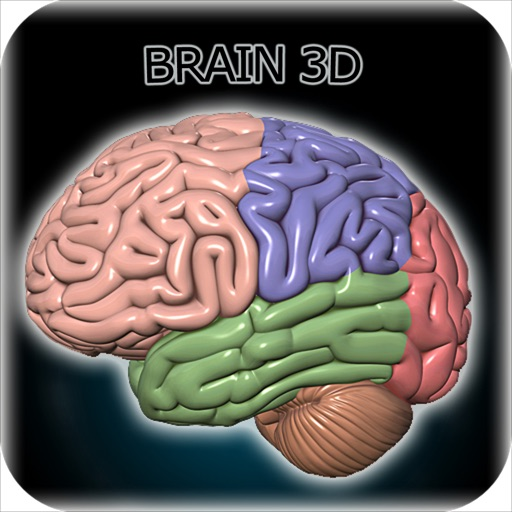 brain 3d for iphone by hch apps, incbrain 3d for iphone