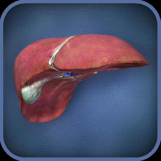 Liver Viewer