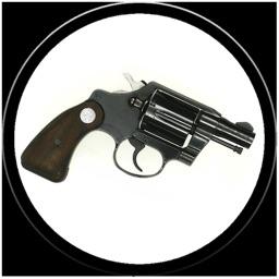 Gun Quiz