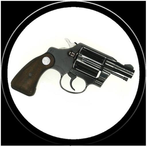 Gun Quiz by Alix Ingber