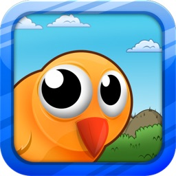 Big Eyed Bird Adventure Lite