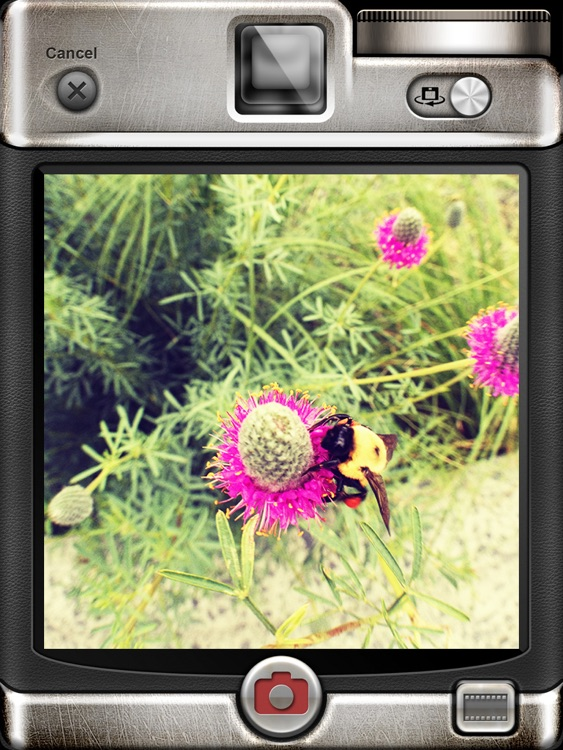 Vintage Camera Pro for iPad screenshot-1