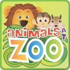 Activities of Animals at Zoo Lite