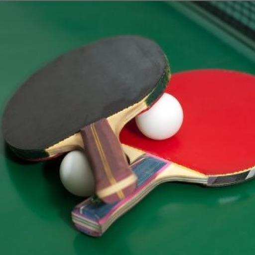 Table Tennis Pro Free
