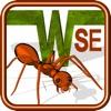 Ant Wars SE