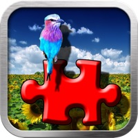 Codes for Flickr Photo Viewer And Puzzle Maker Hack