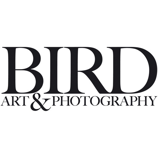 Bird Art & Photography icon