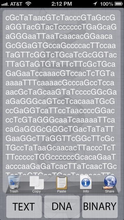 B1nary DNA