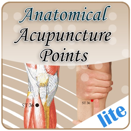 anatomical illustration of acupuncture points pdf