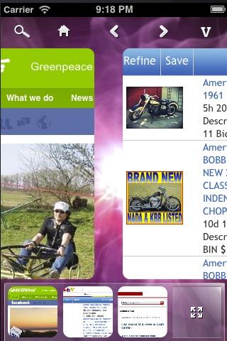 Panoramic Web Browser