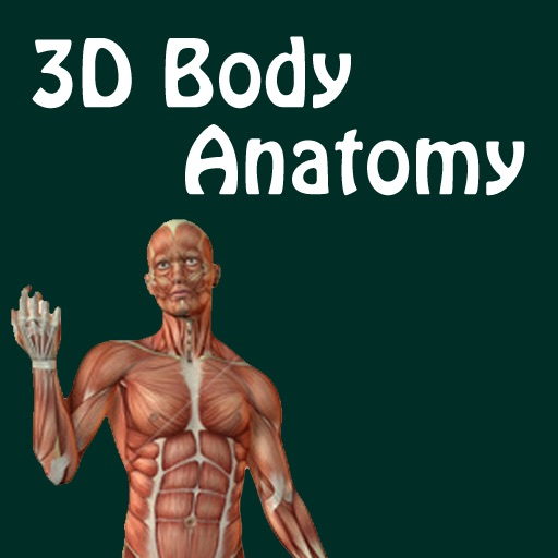 3D Body Anatomy Doctor