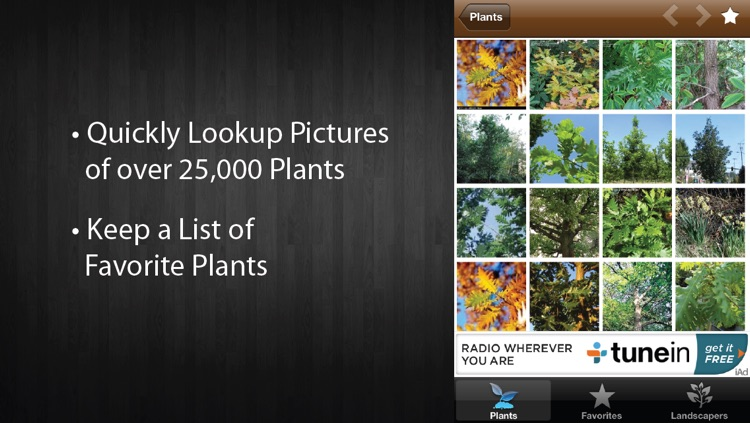 Plant Pictures - Plant Picture Guide for Gardeners and Landscapers